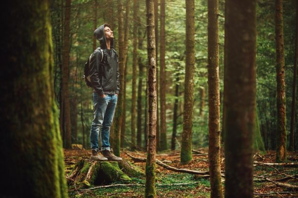 Мужчина в лесу