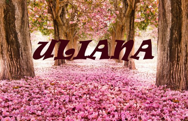 Надпись ULIANA на фоне цветущей сакуры