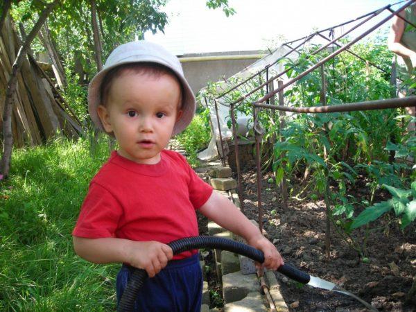 Мальчик поливает рассаду
