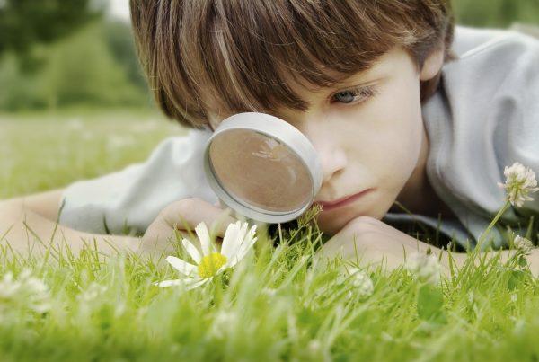 Мальчик с лупой разглядывает растения