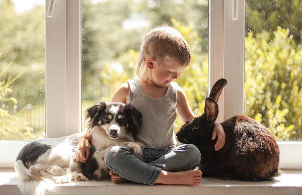 Мальчик с собакой и кроликом