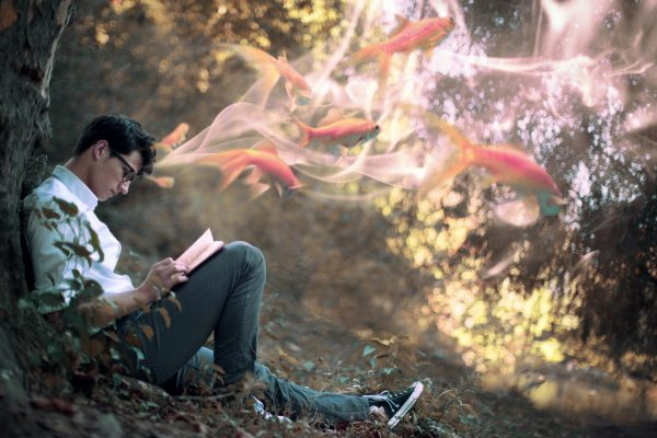 Мужчина читает книгу в лесу