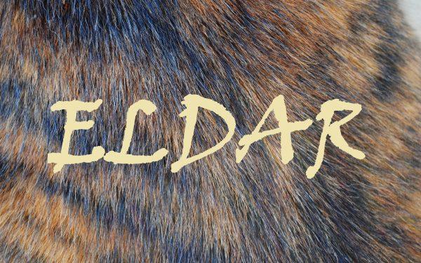 Надпись ELDAR
