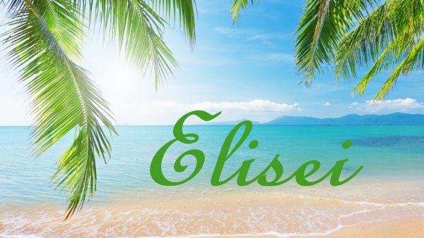 Надпись Elisei