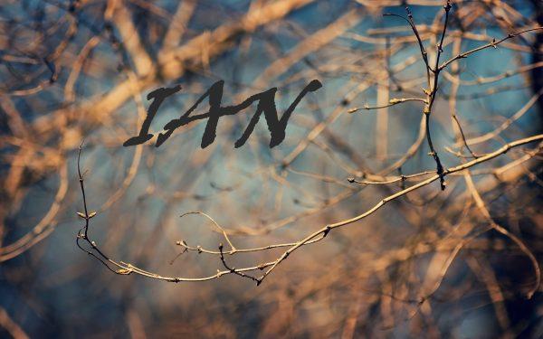 Надпись IAN на фоне деревьев