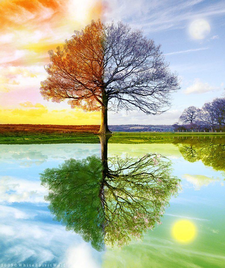 Природа картинки все времена года