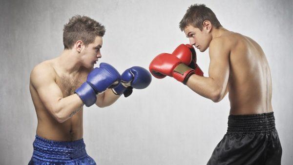 Два боксёра