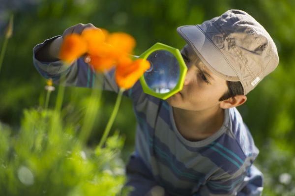 Мальчик рассматривает цветы через лупу