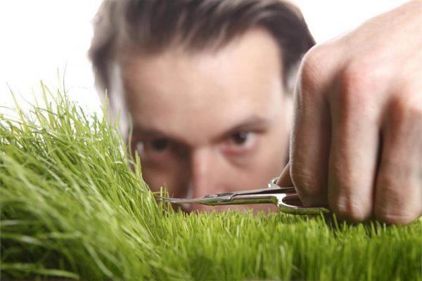 Мужчина подстригает траву