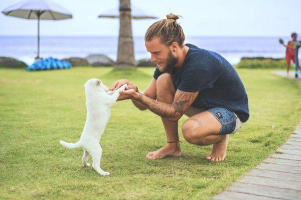 Мужчина с белым котом