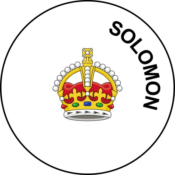 Надпись Solomon