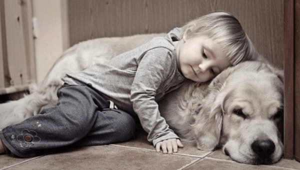 Фото мальчика с собакой