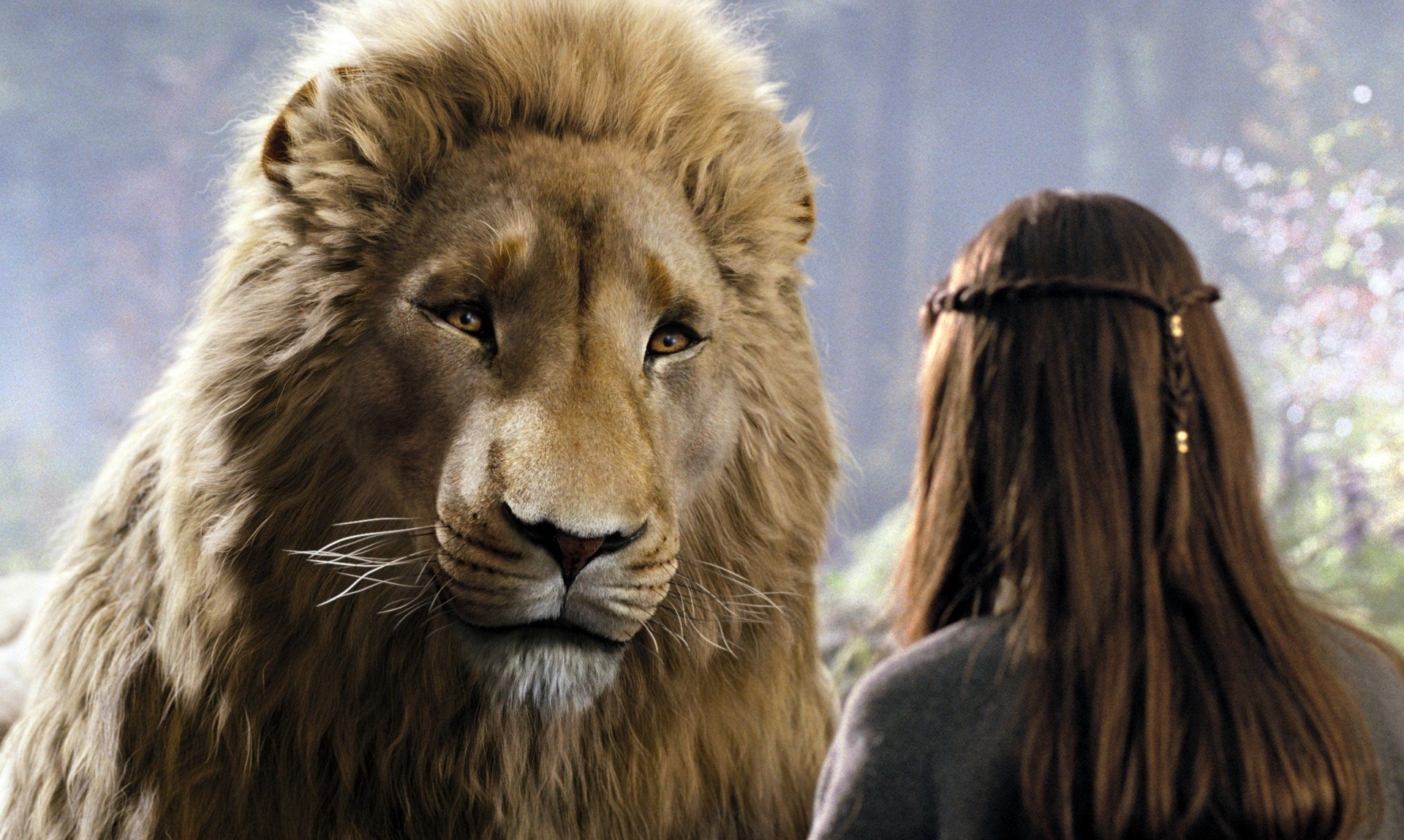 лев аслан из нарнии картинки этом
